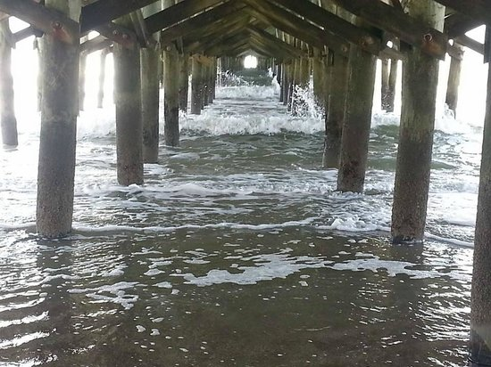 Compass Cove Oceanfront Resort: under the pier