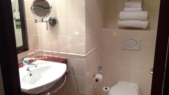 Hôtel Concorde Montparnasse : バスルームは狭いが清潔