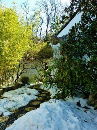 Snug Harbor Cultural Center : Snowy Garden