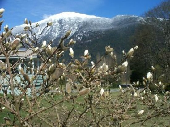 Bella Coola Valley : Nuxalk Mountain in Early Spring
