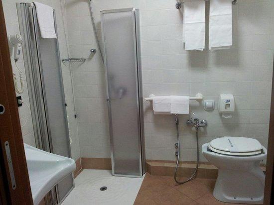 Hotel President : Bagno attrezzato per disabili SCOMODISSIMO per chi non lo è