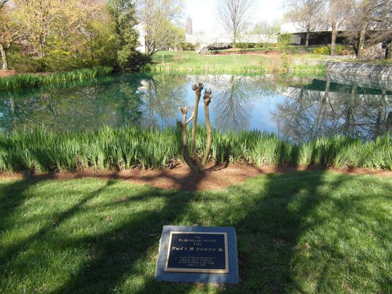 Jimmy Carter Library & Museum: Garden and Lake