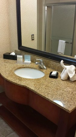 Hampton Inn & Suites Las Cruces I-25: Bathroom area