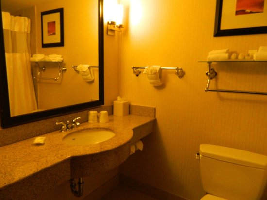 Hilton Garden Inn New York/Manhattan-Chelsea: Bathroom