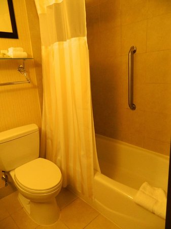 Hilton Garden Inn New York/Manhattan-Chelsea: Bath