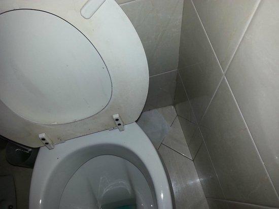 Marinella: Carta igienica per terra