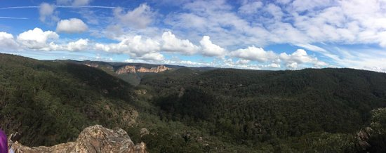 Sydney Great Escapes - Blue Mountains Day Tours: View of one of the little trails