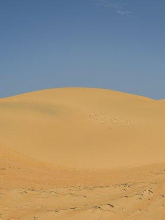 Lydia Chambres d'Hôtes : Excursion dans le désert