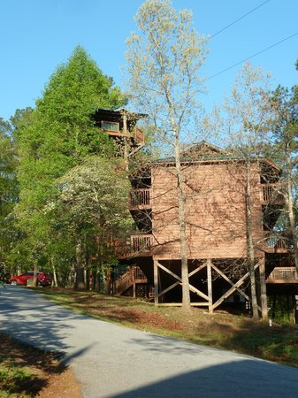Historic Banning Mills Zip Line Canopy Tours: That tower on the left is the first level two zip line