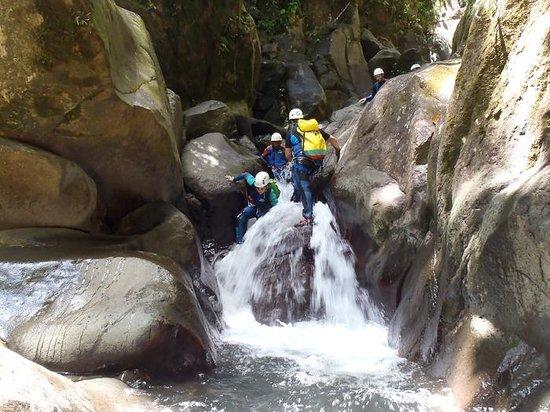 Vert-Intense : Canyon (5)