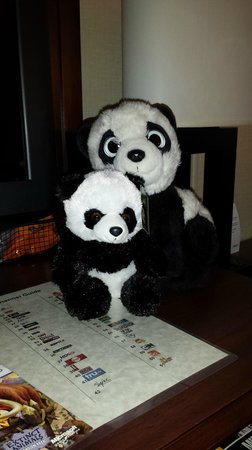 Holiday Inn Washington - Capitol: Only the small panda comes in the panda package!