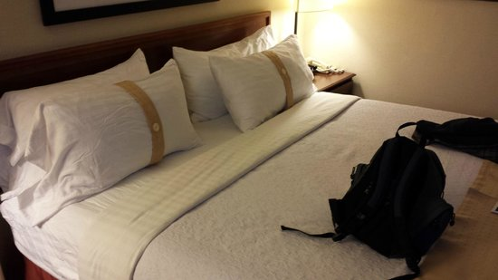 Holiday Inn Washington - Capitol: Just a room pic!