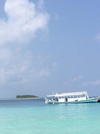 Komandoo Maldives Island Resort : Komando