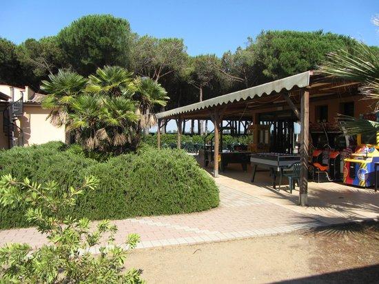 Village Golfo degli Etruschi: bar