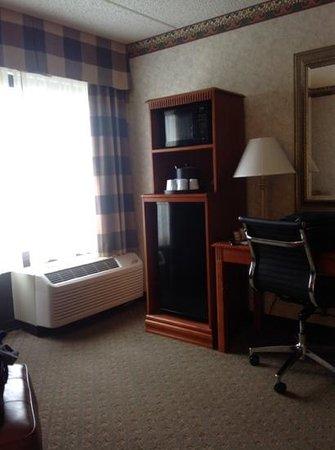 Hampton Inn Los Angeles/Arcadia/Pasadena : Refrig and desk in the room.