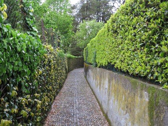 Casa la Rosa : Sentiero pedonale per raggiungere il centro di Bellagio