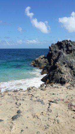 De Palm Tours: Aguas cristalinas bajo el puente natural
