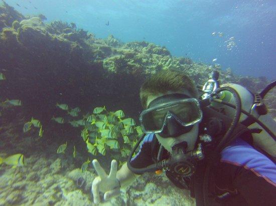 The Reef Marina: Reef Marina