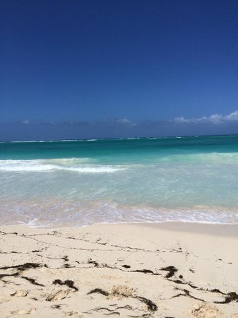 Paradisus Punta Cana: stunning
