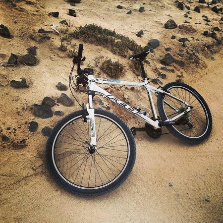 Life Cycles Fuerteventura: Rented MTBs from Life Cycles