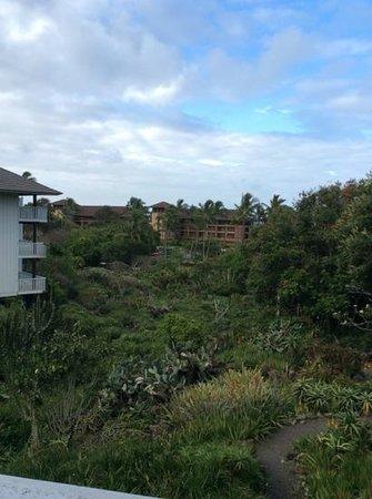 Kiahuna Plantation Resort: photo from lanai