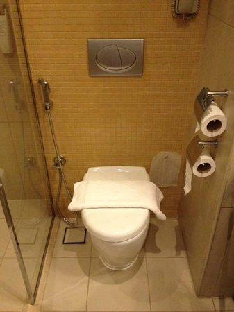 Ibis Deira City Centre: WC
