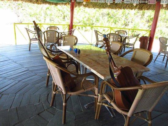 Lennyu0027s Bar And Grill | Playa Prohibido