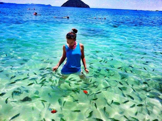 Navatara Phuket Resort: Coral Island