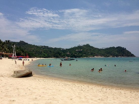 Buri Rasa Koh Phangan : View from my sunbed!