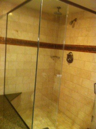 Rio All-Suite Hotel & Casino: shower