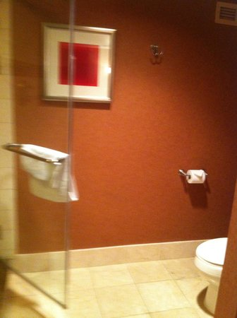 Rio All-Suite Hotel & Casino: good space between toilet and shpower