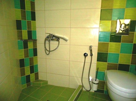 Aris Hotel: shower
