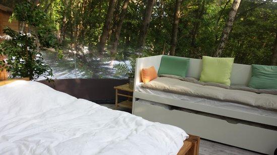 Hotel des Vosges : Intérieur Bulle au bois dormant