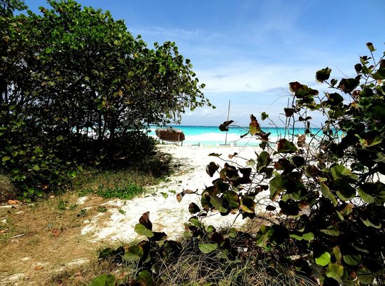 Hotel Tuxpan Varadero: Blick auf den Strand
