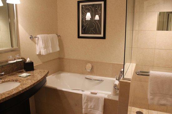 Four Seasons Hotel Prague: baheiro
