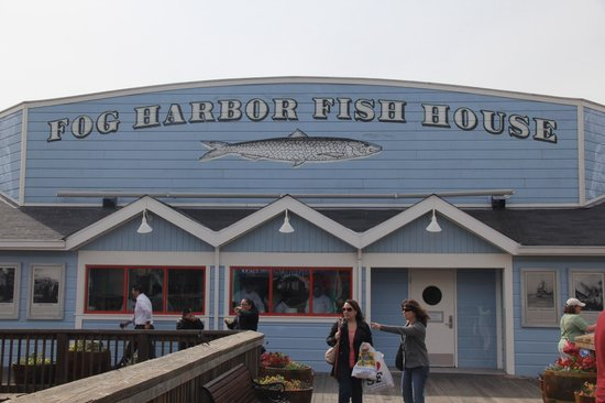 Fog harbor fish house picture of fog harbor fish house for Fishing store san francisco