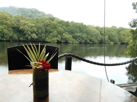 Pacific Treelodge Resort: レストランから