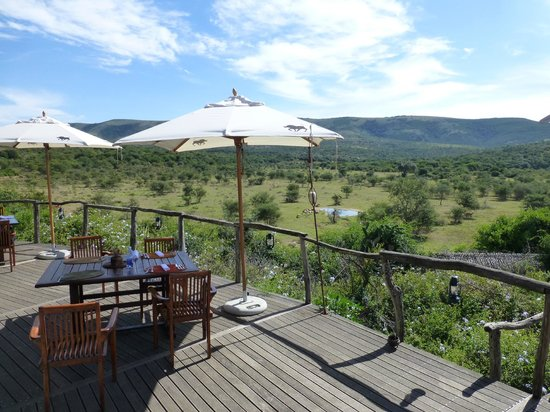 Pumba Private Game Reserve: The lunch deck had a view to the watering hole