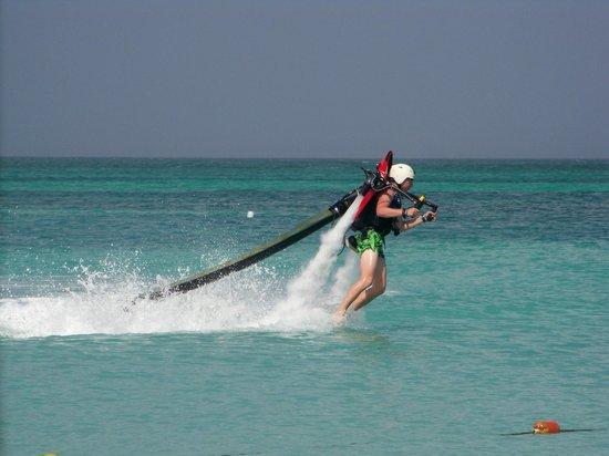 Divi Aruba Phoenix Beach Resort: Fun in the Water