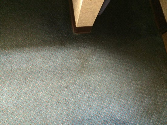Days Inn Phoenix North: Filthy carpet