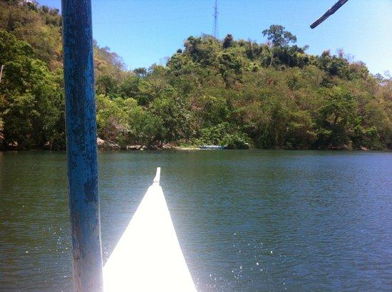 Palawan Mangrove Resort: river tour