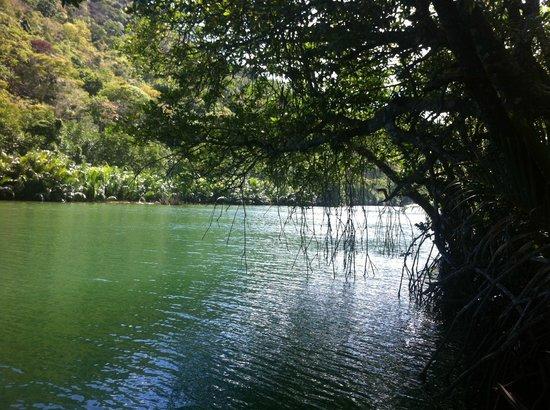 Palawan Mangrove Resort: river at resort dock