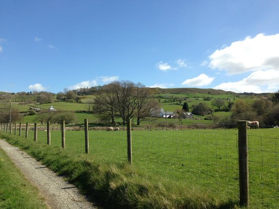 Maes Madog Farm Cottages: Views from the grounds