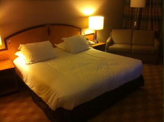 Hilton Paris Charles de Gaulle Airport: chambre