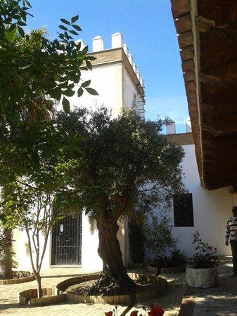 Cortijo Los Monteros: Patio Entrada a la Habitación