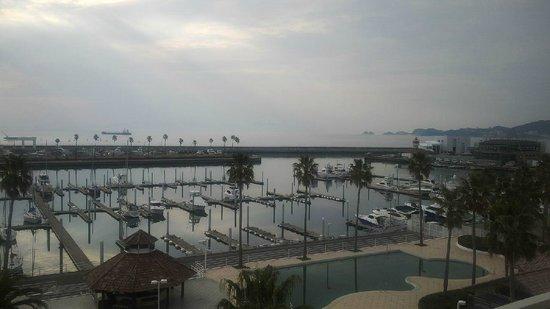 Wakayama Marina City Hotel : Yacht Harbour View from the Hotel Balcony
