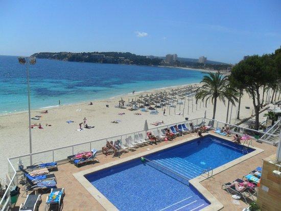 Flamboyan Caribe: Pool and Beach