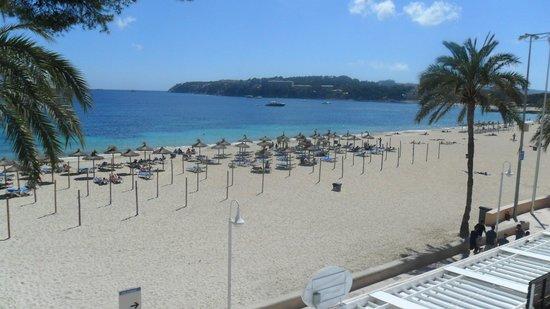 Flamboyan Caribe: Magalluf Beach