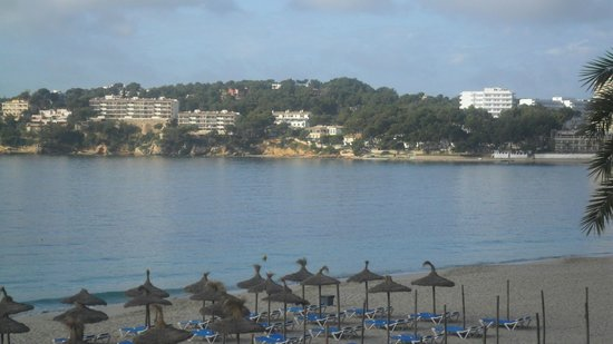 Flamboyan Caribe: Beach and view from room.