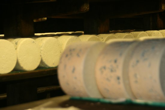 Fromagerie Papillon Caves : Quesos Roquefort
